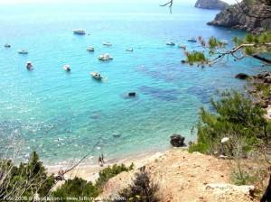spiagge bandiera blu in Toscana