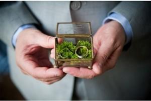 matrimonio ecologico