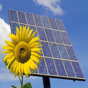 dove comprare pannelli fotovoltaici