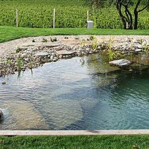 piscine ecologiche